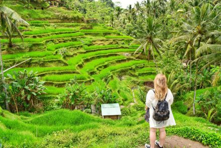Bali and its beautiful rice paddies with me looking at them