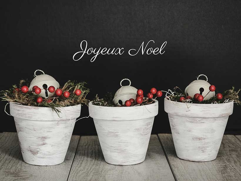 joyeux-noel-and-some-flower-pots-french-christmas